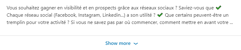 Pierre Capelle - linkedin - instagram - resume - 3 - lignes